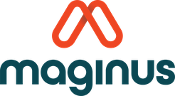 MAGINUS SOFTWARE SOLUTIONS LIMITED