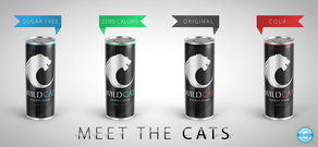 WILD CAT ENERGY DRINK LTD