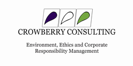 CROWBERRY CONSULTING LIMITED
