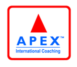 APEX TRAINING SOLUTIONS LTD